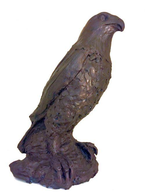 Raptor 2 sculpture by Bronwyn Culshaw