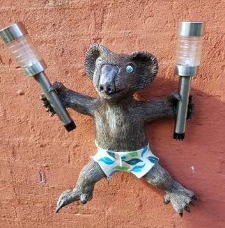 Welcome Koala