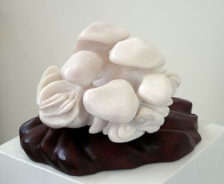 Mushroom Cluster No. 2