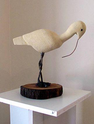 Clarissa the Curlew