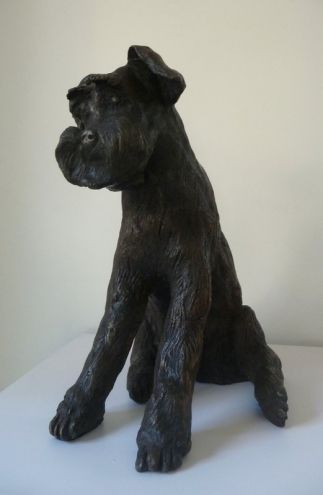 William lll